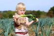 Funny preschooler girl picking leek in the field