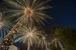 christmas background palm tree