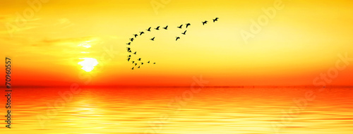 In de dag Oranje eclat paisaje panoramico de la puesta de sol dorada