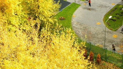 town autumn
