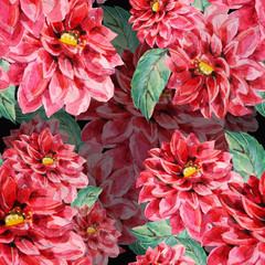 Red dahlia, floral pattern