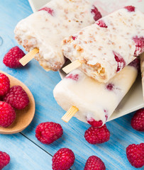 Frozen yogurt with oats and raspberries