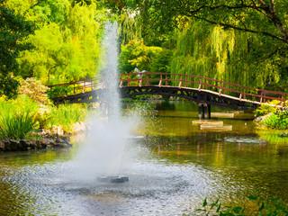 Lake fountain in a park