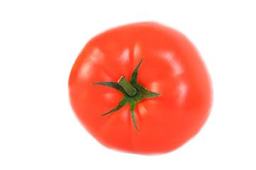 Tomate Makro 2