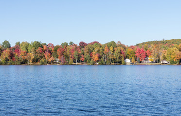 Fall colors in cottage country