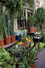 Facade of a flower shop