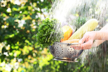 Washing vegetables, outdoors