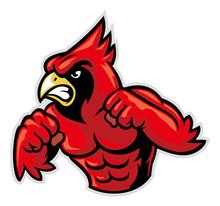 Cardinal Bird Mascot Show His Muscle Sticker