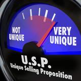 USP Unique Selling Proposition Gauge Level Different Special Qua poster