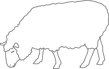 羊 横向き アウトライン