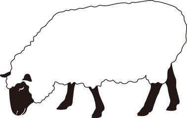 羊 横向き 白