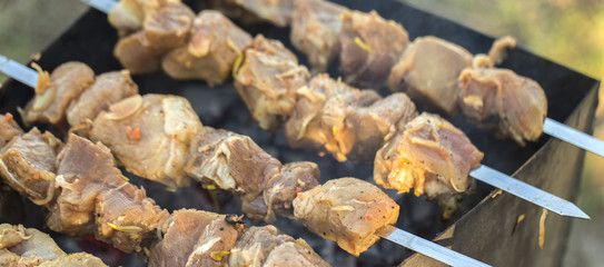 Appetizing fresh meat shish kebab.