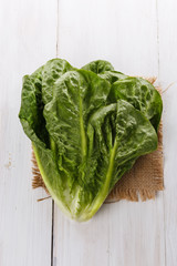 Cos lettuce over white wooden background