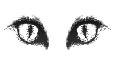 Hand drawn cat eyes. Vector eps10