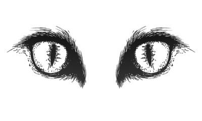 Hand drawn cat eyes. Vector eps10