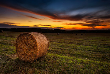 Landscape with a field full of hay bales at sunset