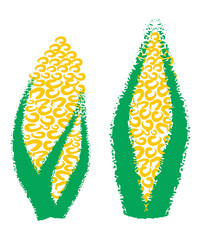 Hand drawing corn, maize,