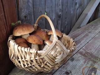 белые грибы в лукошке
