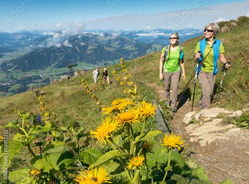 Tuinposter Alpinisme Kitzbüheler Horn 3