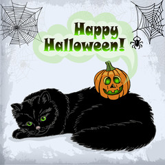 Card of Halloween cat and pumpkin with green eyes