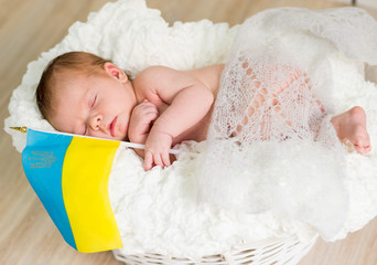 lovely newborn baby sleeps