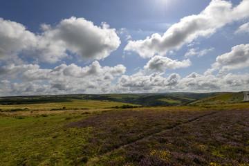 moor landscape, Exmoor