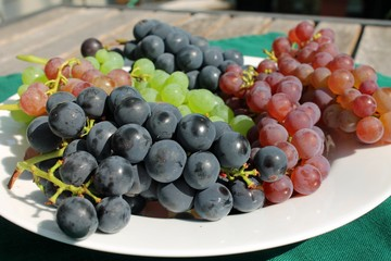 Fresh ripe bunches of grapes on a sunny patio table