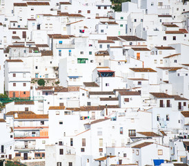 white houses Spanish