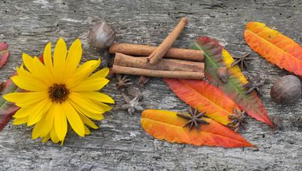épices et automne