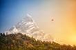 Paragliding in Himalaya - 71001736