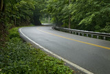 Smoky Mountain Road