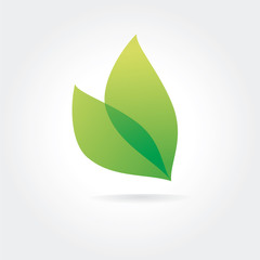 Abstract vector green leaf logotype concept isolated on white
