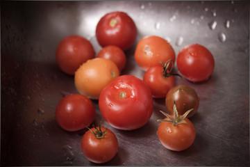 Tomatenabwasch