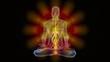 Man in yoga meditation pose with chackra symbols