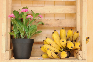 Flower pot with yellow bananas in wood-box