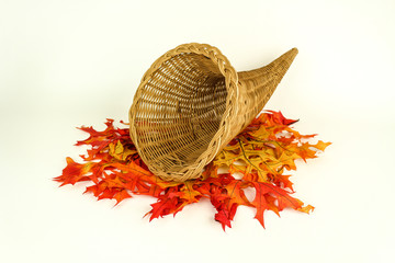 Autumn Harvest and Empty Cornucopia