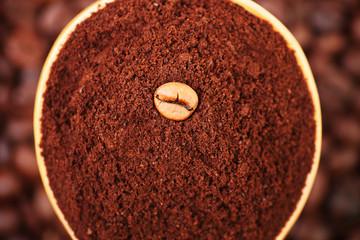 Chicco di caffè su un cucchiaio di caffè macinato