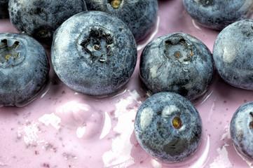 Blueberries on Greek rasberry yogurt