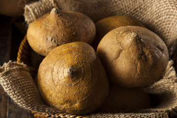 Raw Organic Brown Jicama