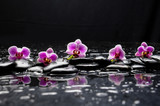 Fototapeta Kitchen - still life with black stone and five orchid © Mee Ting