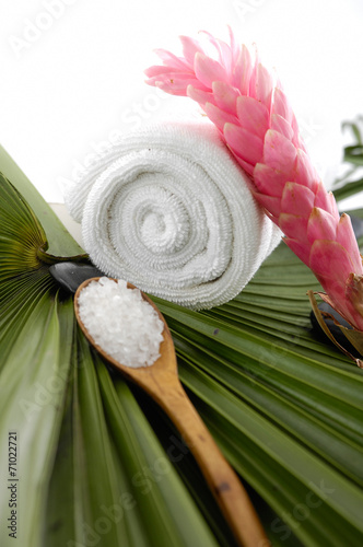 Poster Spa Tropical spa