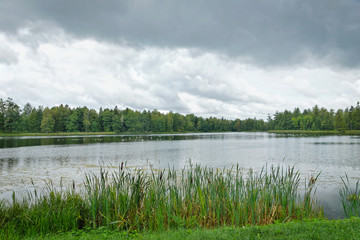Summer landscape at the lake in a cloudy day