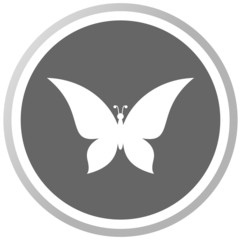 a butterfly in a grey Panel