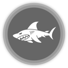 a shark in a grey panel