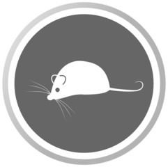 a mouse in a grey Panel