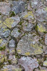 stones in moss and lichen background