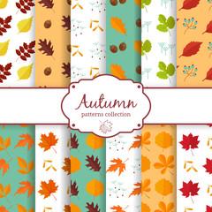 Autumn seamles backgrounds set