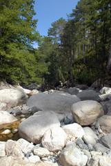Dans la vallée de la Restonica en Corse
