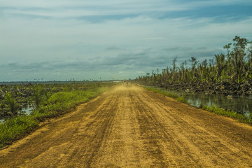 The journey of palm oil plantation