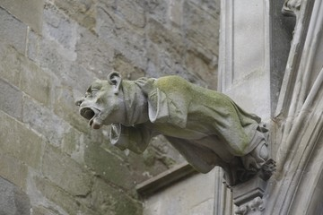 Gargoyle - Carcassonne, France